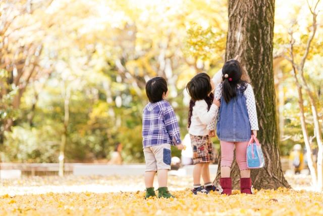 ワールドワイドキッズ口コミ購入後1年:幼稚園児1日のスケジュール
