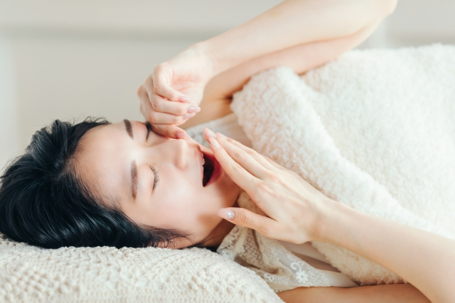 おすすめ高級羽毛布団【軽くて温かい日本製の布団で眠りたい】
